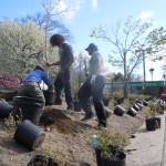 Planting slope