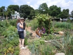 Southwest Boston Community Garden
